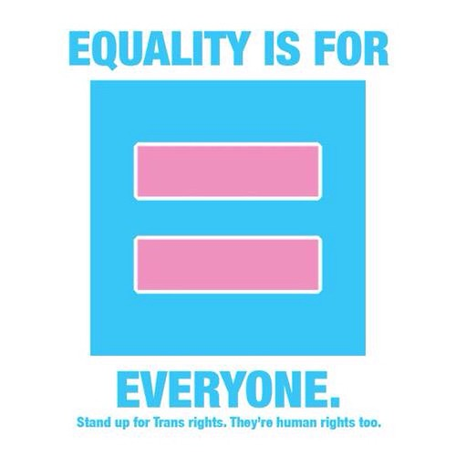 This is a symbol for the want for equality when it comes to Transgender people and their rights.